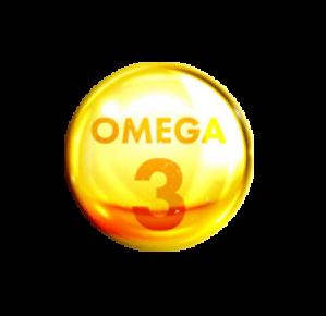 Определение усвояемости Омега-3