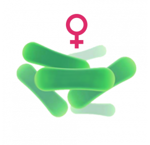 Индивидуальный подбор вагинальных пробиотиков